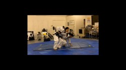 Sidearm Protection for Law Enforcement part 4 standing armbar